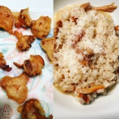 fried chanterelles and chanterelle risotto