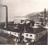 Roiano Distillery ph. google